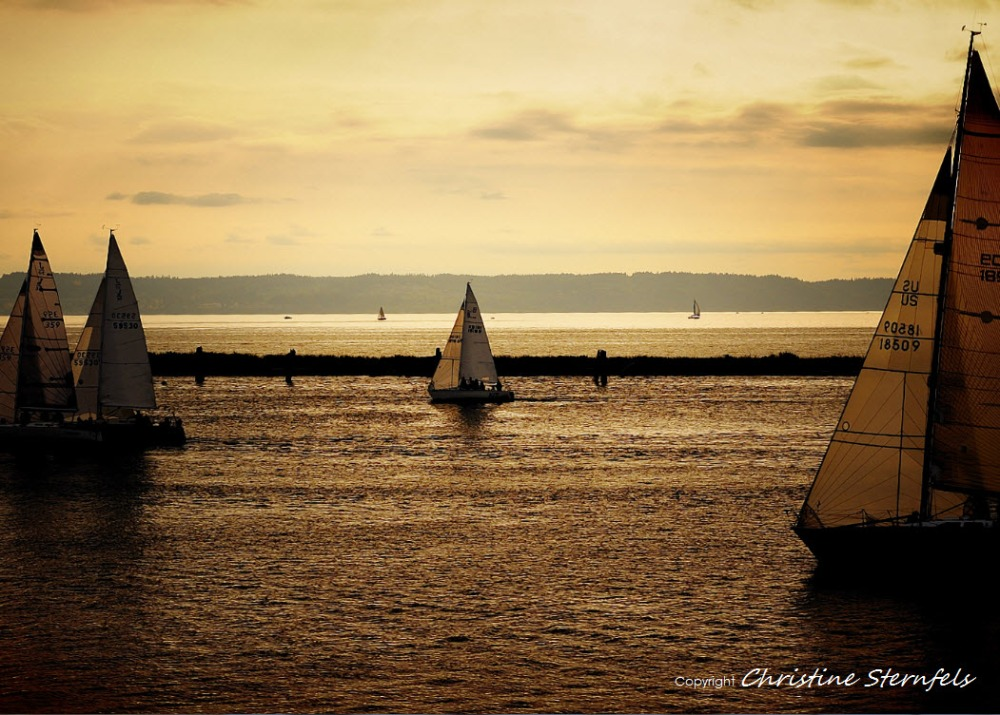 SUNSET RACE - Copyright Christine Sternfels