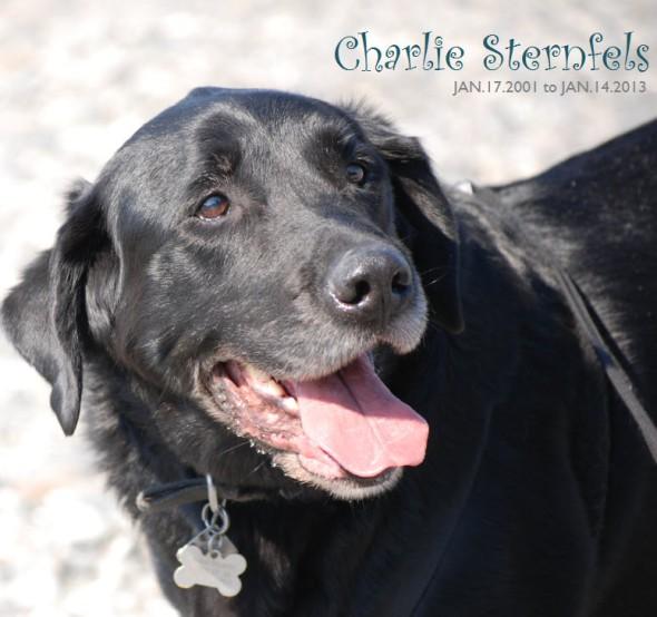 CHARLIE_STERNFELS