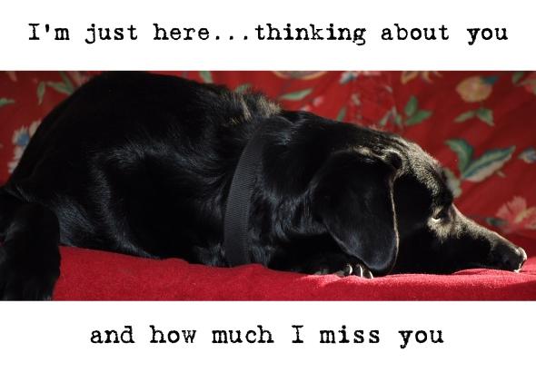 I miss you_1
